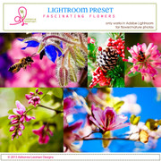 Lightroom Preset fascinating flowers