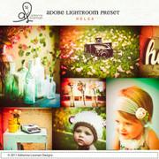 Lightroom Preset Holga