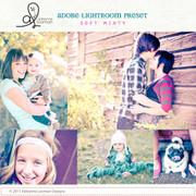 Lightroom Preset Soft Minty