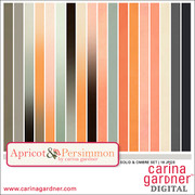 Apricot and Persimmon Solids Pack