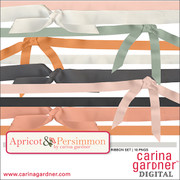 Apricot and Persimmon Ribbon Pack