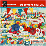 Document Your Joy