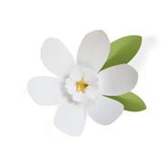 Daisy #2 SVG Cut File