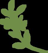 Leaf #4 SVG Cut File