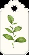 Leaf Tag SVG Cut File