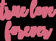 True Love Forever SVG Cut File