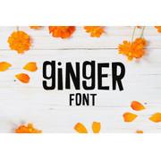Ginger Font
