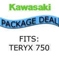 Kawasaki Teryx Package Deal