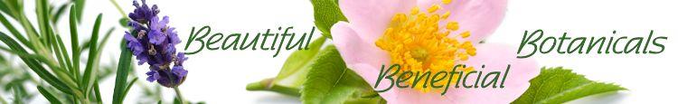 herbal-catagory-the-tasste-of-tea.jpg
