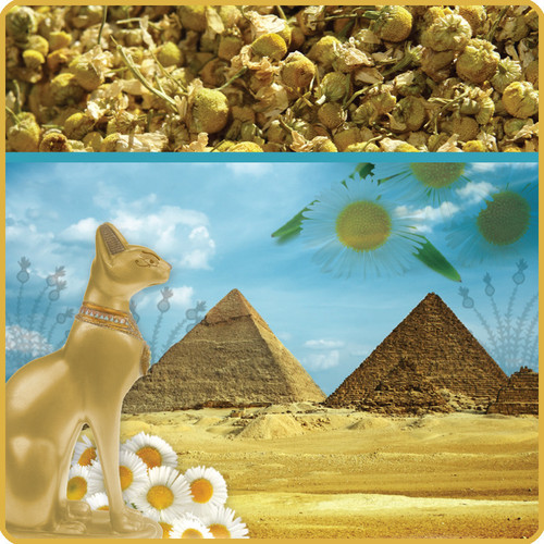 Pharaoh's Chamomile Wellness Gift Box. Also in Foodie Packaging.