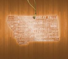 Montana Acrylic State Ornament
