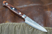 Tsunehisa VG-10 Paring Knife - 80mm - Western Handle  420