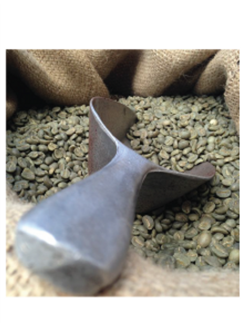 Green Coffee Beans | 10 Pounds