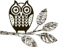 owl-roast-and-brew.png