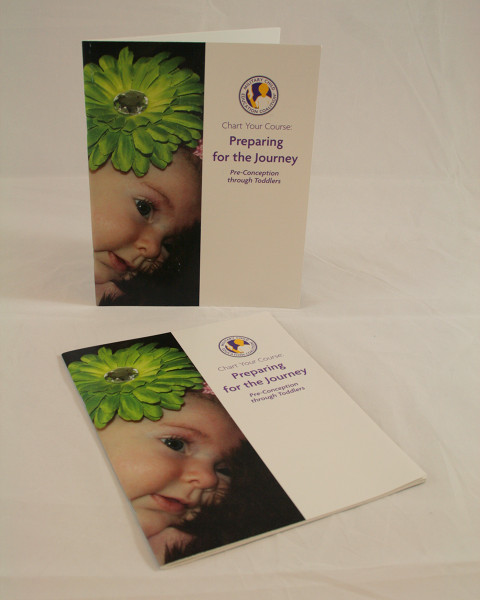 Chart Your Course: Preparing For The Journey Pre-conception through Toddler