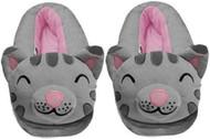 The Big Bang Theory Soft Kitty Gray Slippers