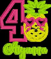 Pineapple Themed Birthday Set