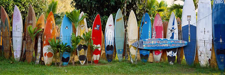surfboard-fence.jpg