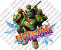 Teenage Mutant Ninja Turtles Ninja in Training ~ Edible Icing Image
