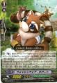Washup Raccoon R BT13/042