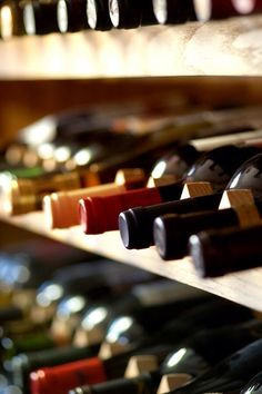 Ultimate Non-Alcoholic Wine Mixed Case