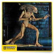 Deep in space, something is happening at a remote Weyland-Yutani scientific outpost! The terrible coincidence of a power outage and a deep space radiation has created a new Xenomorph… one that's right at home in the pipes and tubes of the station's sub-levels. The Sewer Mutation Warrior Alien stands over 9″ tall and features over 30 points of articulation and a bendable tail. Limited edition of 3,000