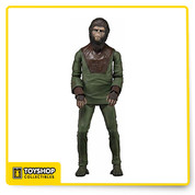 """Cornelius  articulated version of the world's most well-known primates , detailed action figure from the beloved 1968 film, Planet of the Apes ,  entirely faithful to their look in the original movie.   Figure stands approximately 7"""" tall and comes with character-specific accessories."""