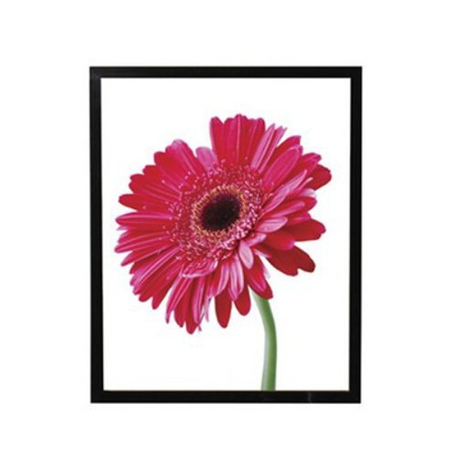 Urban Series Black Poster Frame with Black Gloss Finish, 24 by 30-Inch
