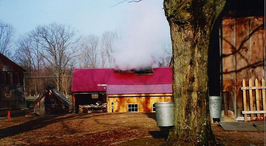 north-hadley-sugar-shack.jpg