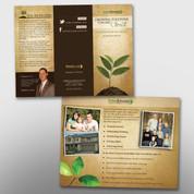 Adult Bible Class Brochure #14130