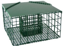 Songbird Essentials Squirrel Resistant Suet Palace
