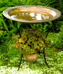 Ancient Graffiti Copperplated Steel Birdbath