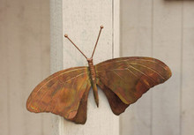 Ancient Graffiti Butterfly Wall Mount Flamed Copper