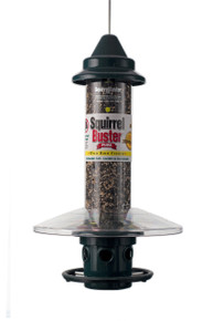 Brome Squirrel Buster Weatherguard