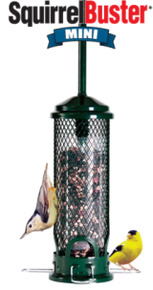 Brome Squirrel Buster Mini Bird Feeder