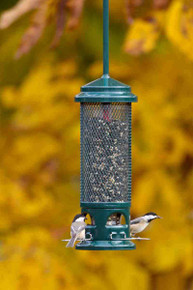 Brome Squirrel Buster Legacy Wild Bird Feeder