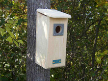 Coveside Hairy, Red-headed & Red-bellied Woodpecker House