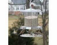 Songbird Essentials All Weather Feeder 6 Qt. Clear