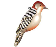 Cobane Studio COBANEC391 Red Bellied Woodpecker Ornament