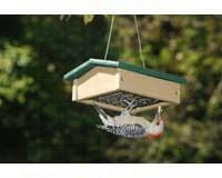 Songbird Essentials Small Upside Down Suet Feeder Hunter Driftwood