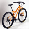 Stock Steel Spaceframe/ Truss Fork complete bicycle