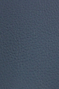 Xtreme Navy Blue