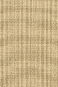 Sunbrella Spectrum Sand 48019-0000