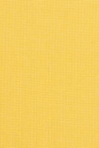 Sunbrella Spectrum Daffodil 48024-0000