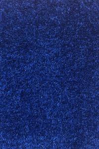 "100% Olefin Pile ""Bayshore"" Marine Carpet - Royal Blue"