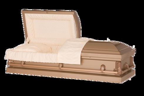 M-Vanguard DC  20-Gauge non-protective metal casket.   Comes in 6 different colors.