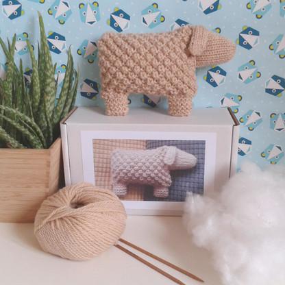 Welsh Mountain Sheep Knitting Kit