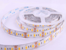 R6060AA - 40W, 300-LED 5050SMD Waterproof Flexible Ribbon Strip - 16.4'