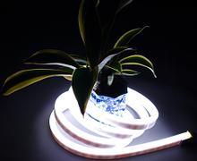 SLW LED® Pro IP68 Neon LED Flex WHITE