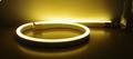 Sample: F15 Flat top SLW LED® PRO Flex Neon Warm White Illuminated